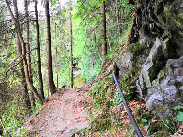 Der und steile Weg entlang der Kirnitzsch
