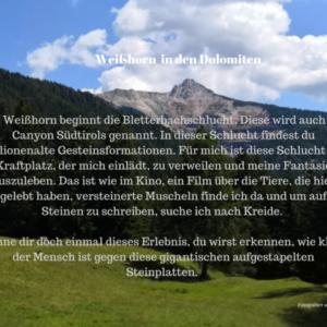 Am Weißhorn beginnt die Bletterbachschlucht, auch Canyon von Südtirol bekannt.