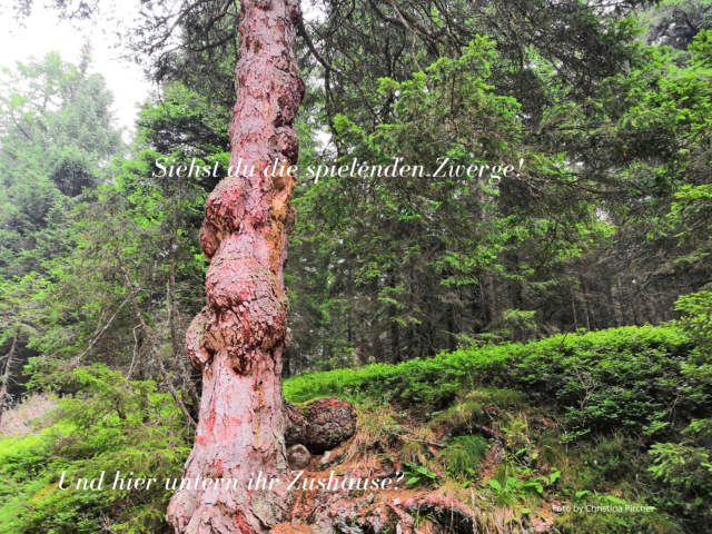 Zwerge klettern am Baumstamm hoch und im Wurzelwerk des Baumes ist ihr Zuhause.